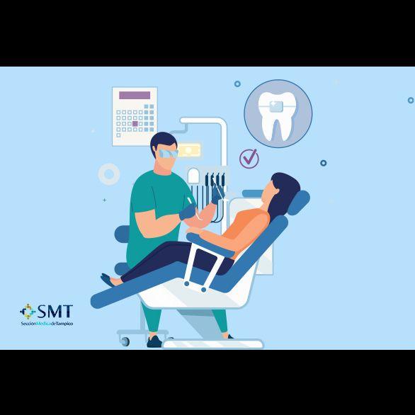 Ortodoncistas en Tampico